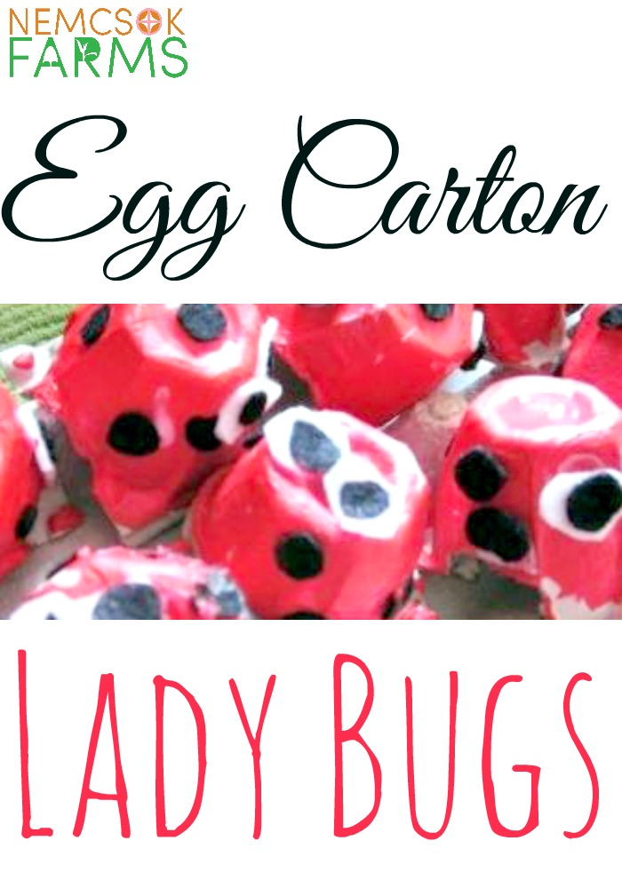 Super Cute Lady Bug Kids' Craft made of recycled egg cartons