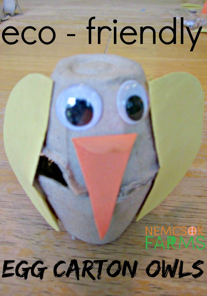 Super Cute Owl Craft made from recyclable egg cartons