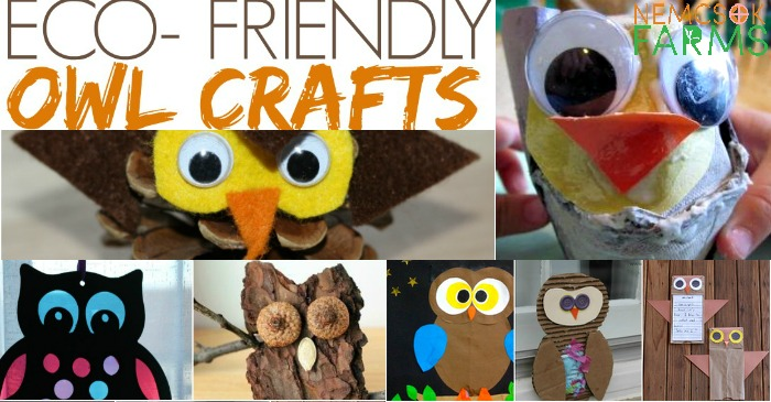 Top 10 Eco-Friendly Owl Crafts post thumbnail image