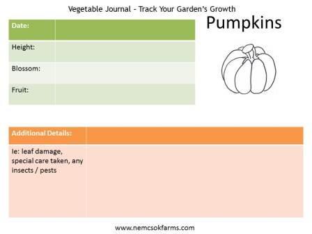 Track Your Garden's Progress post thumbnail image