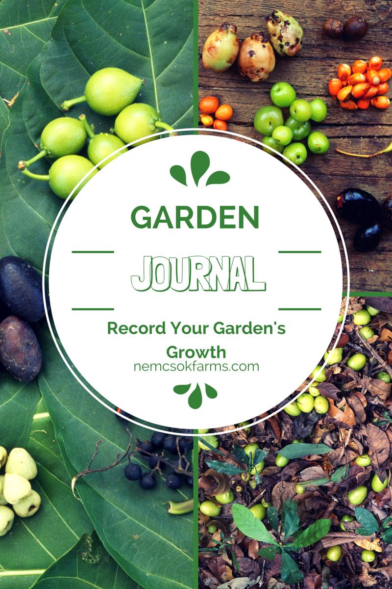 printable Garden Journal to record your garden's progress