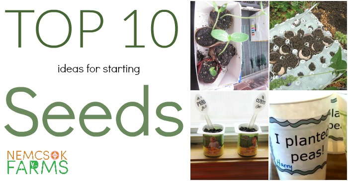 Top Ten Seed Starting Ideas