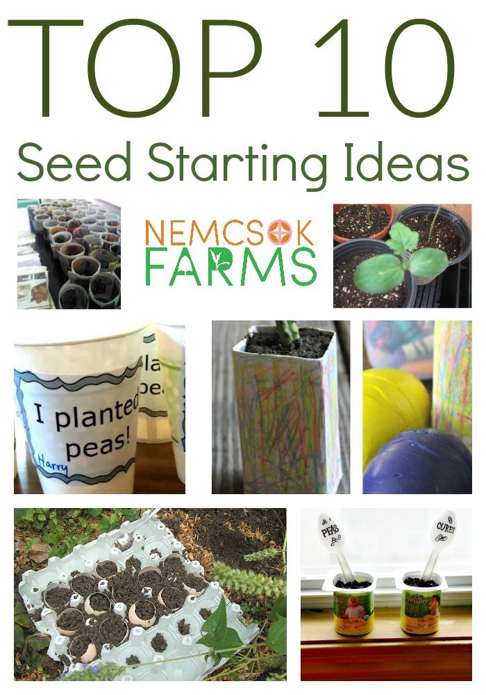 Top Ten Seed Starting Ideas