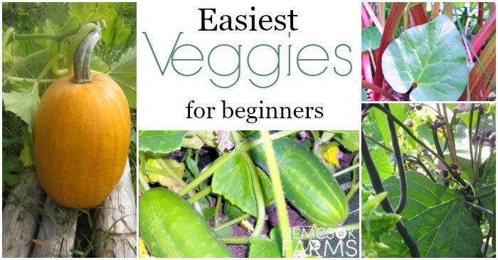 The 7 Easiest Veggies You Can Grow post thumbnail image