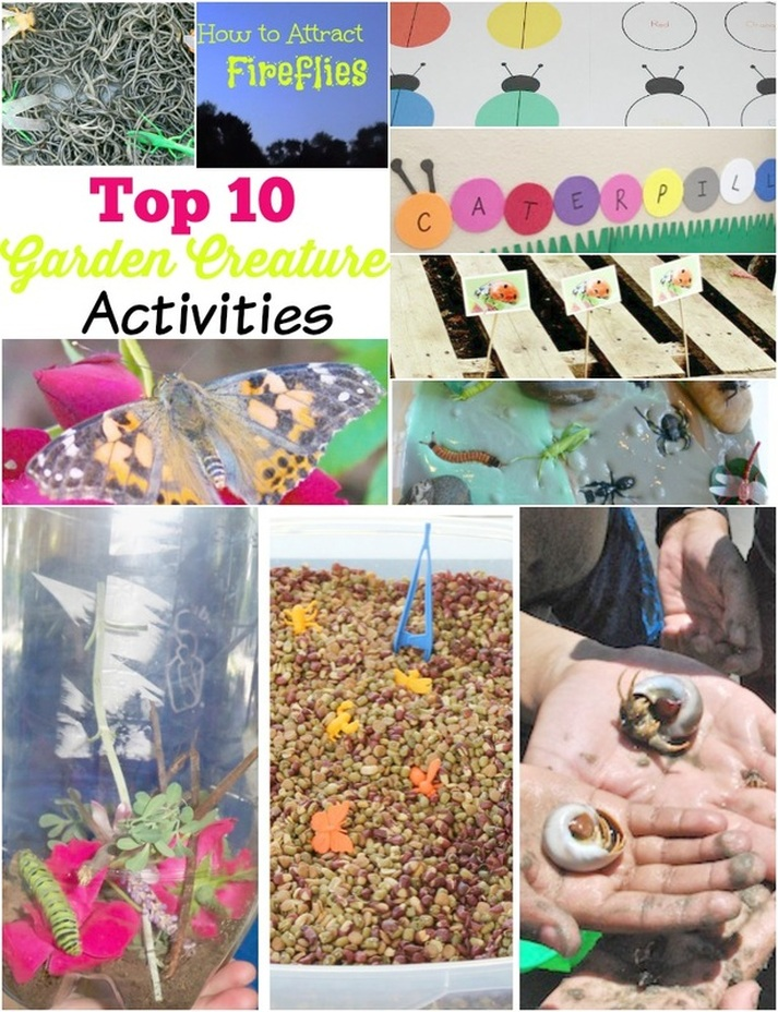 Top Ten Ways To Enterain With Garden Creatures
