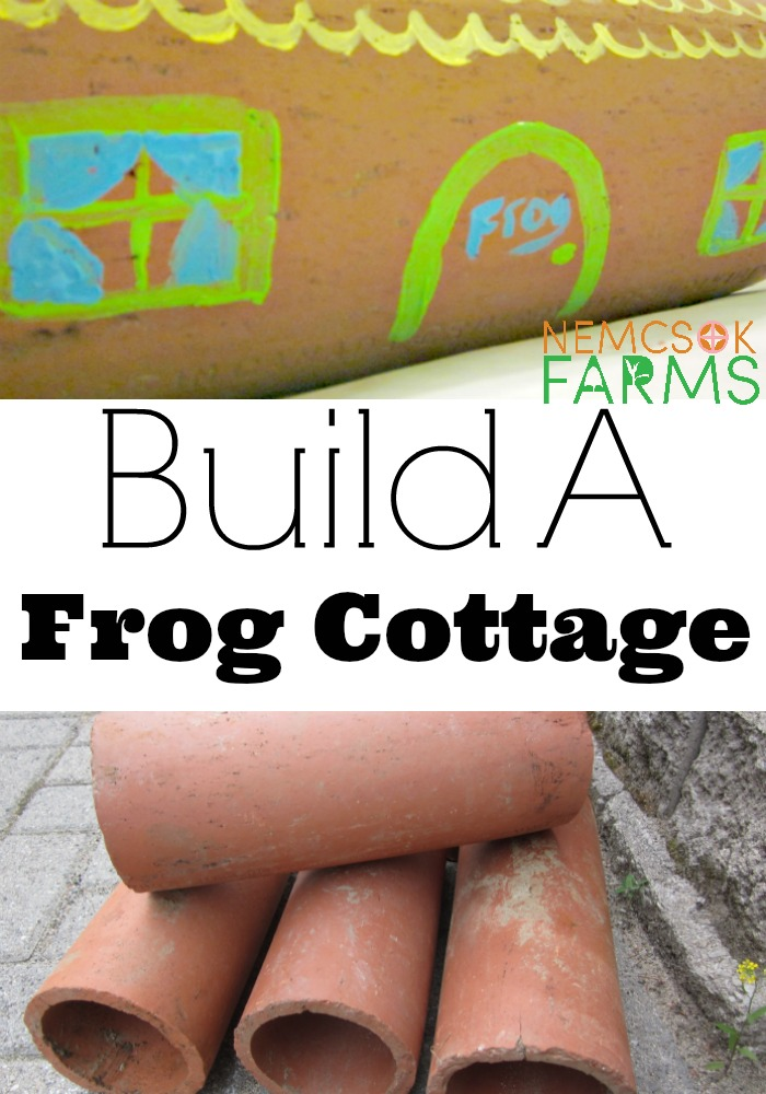 DIY Frog Cottage Perfect for Bug Control and Sweet Summer Sounds