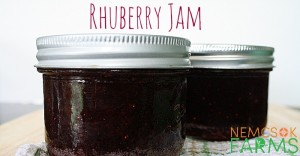 Homemade Rhuberry Jam Preserved rhubarb and strawberries together in this deliciously sweet homemade jam