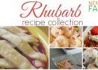 Rhubarb Recipe Collection