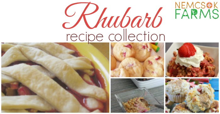 The Best Rhubarb Recipes Collection post thumbnail image