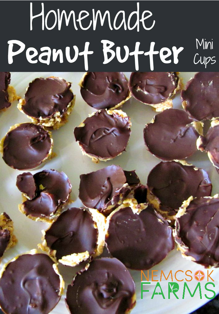 Homemade Mini Chocolate and Peanut Butter Cups