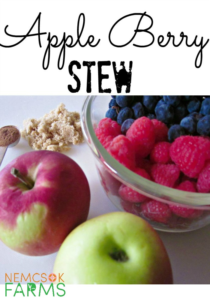 Apple Berry Stew Perfect for Healthy Snacking and oh so easy to make