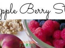 Apple Berry Stew Perfect for Healthy Snacking