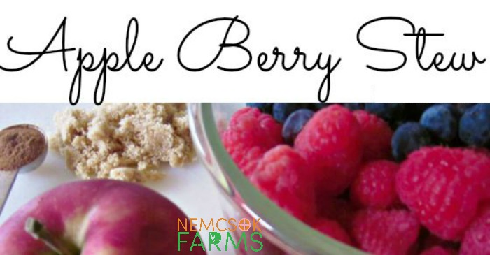 Apple Berry Stew post thumbnail image
