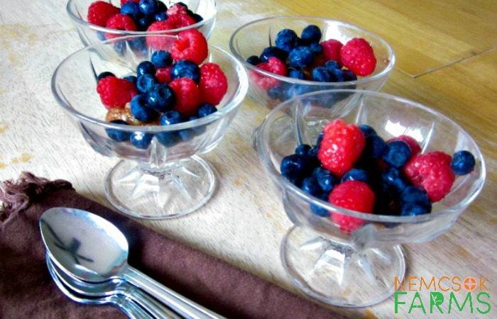 Apple Berry Stew Perfect for Healthy Everyday Snacking
