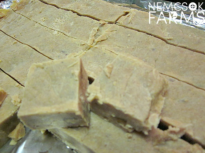 Fresh Pumpkin Fudge Recipe perfect for Christmas Gift Giving, and Thanksgiving Desserts