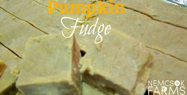 Rich Creamy Fudge made with Fresh Pumpkin Puree perfect for gift giving or indulging. Like a whole lot of pumpkin pie stuffed into one tiny piece of fudge