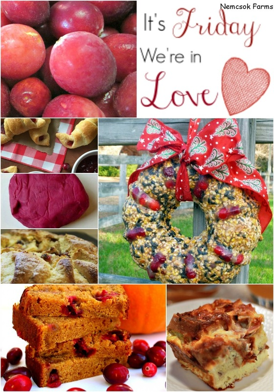 It's Friday and We're in Love with Cranberries! 14 Beautiful ways to cook, play and decorate with Cranberries from our It's Friday We're in Love Linky!