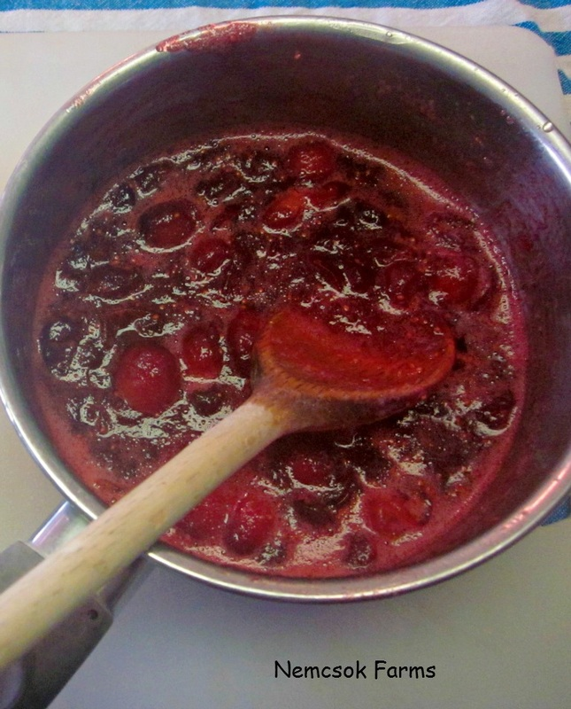 Whole Berry Cranberry Sauce Side Dish - Some occasions call for Homemade
