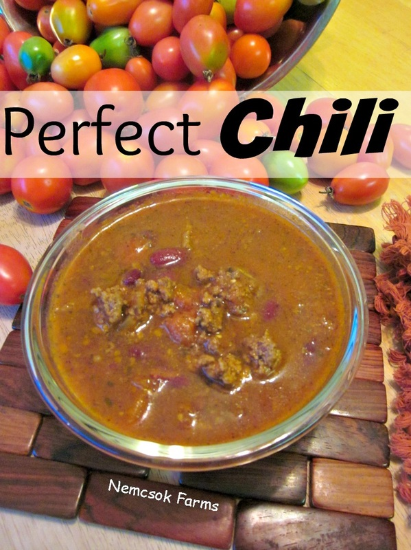 The perfect chili recipe made with fresh from the garden tomatoes, and just the right amount of chil.
