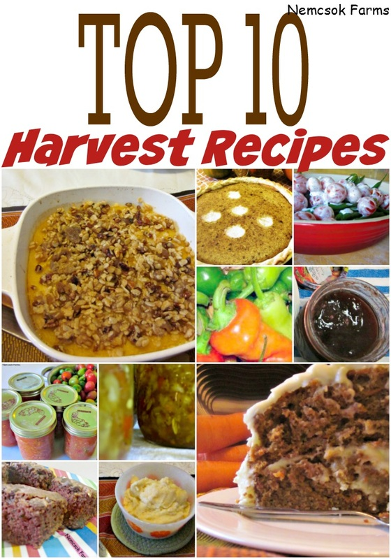 Top 10 Harvest Recipes - fresh from the garden recipes from relatively easy and commonly grown vegetables.