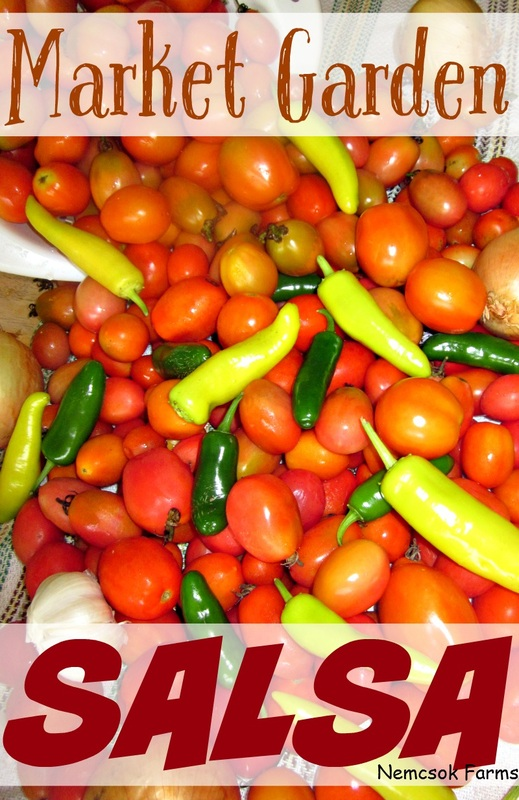Fresh from the garden tomatoes, hot peppers, onions and garlic make up this exciting salsa variety