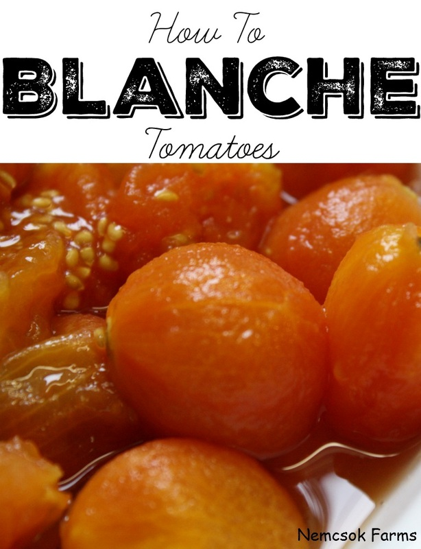 Blanching Tomatoes. A very easy way to preserve you fresh from the garden harvests