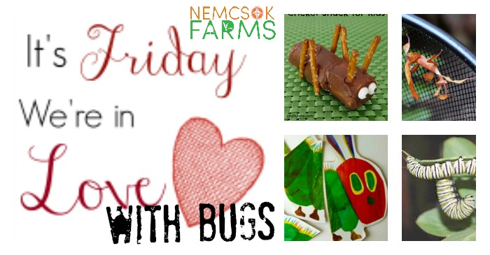 It's friday and we're in love with bug crafts, bug life, bug science, bug activities and all things bugs