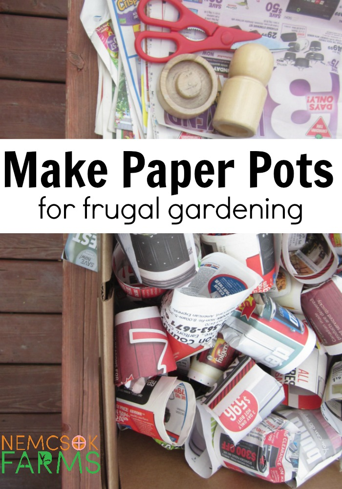 Start your seedling on the cheap - use paper pots