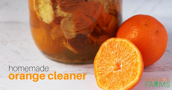 Homemade Cleaners, Healthy Home series: a Homemade Orange Cleaner.