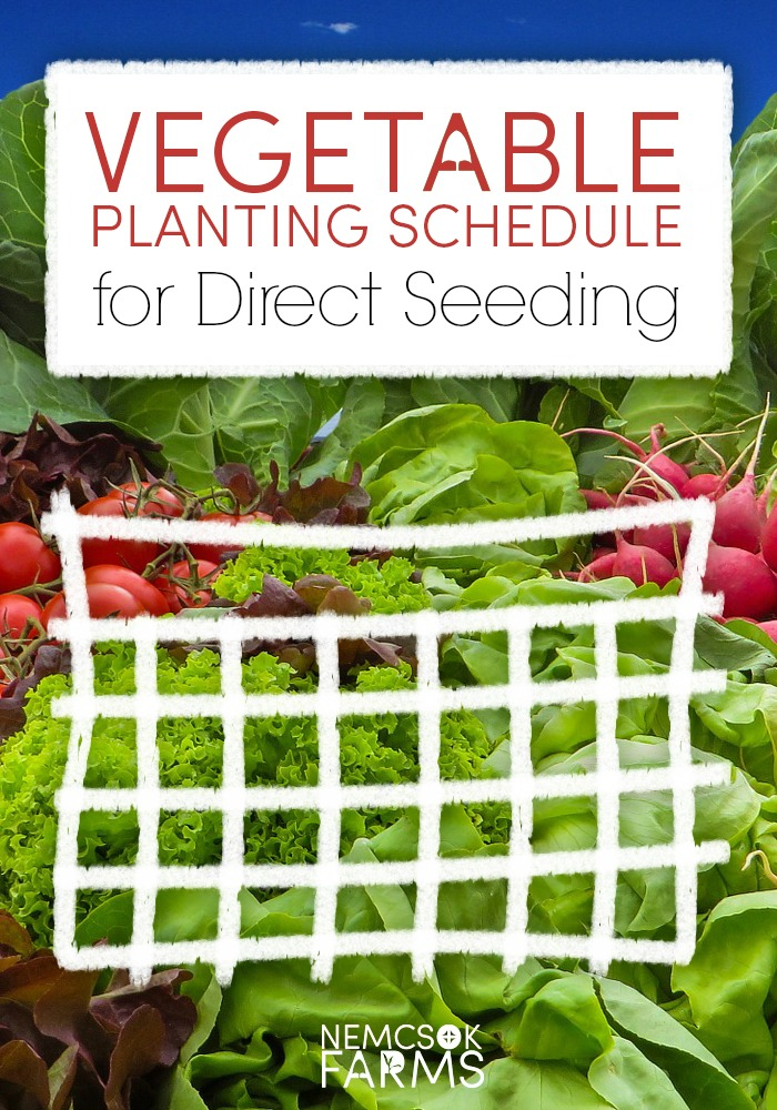 vegetable planting schedule - direct seeding