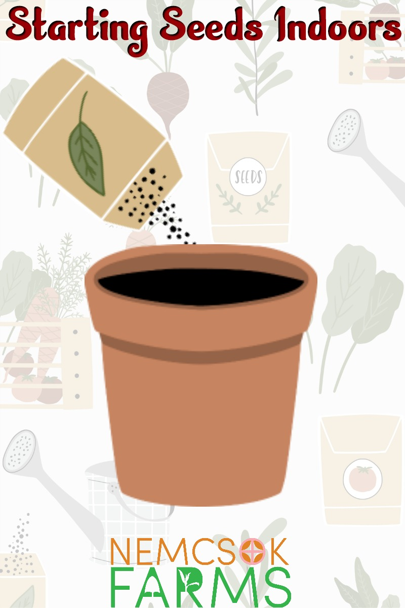 Indoor Seed Starting Guide and Schedule - What, Why, When and How to guide for Starting Seeds Indoors and get your seedlings hardened off and transplanted