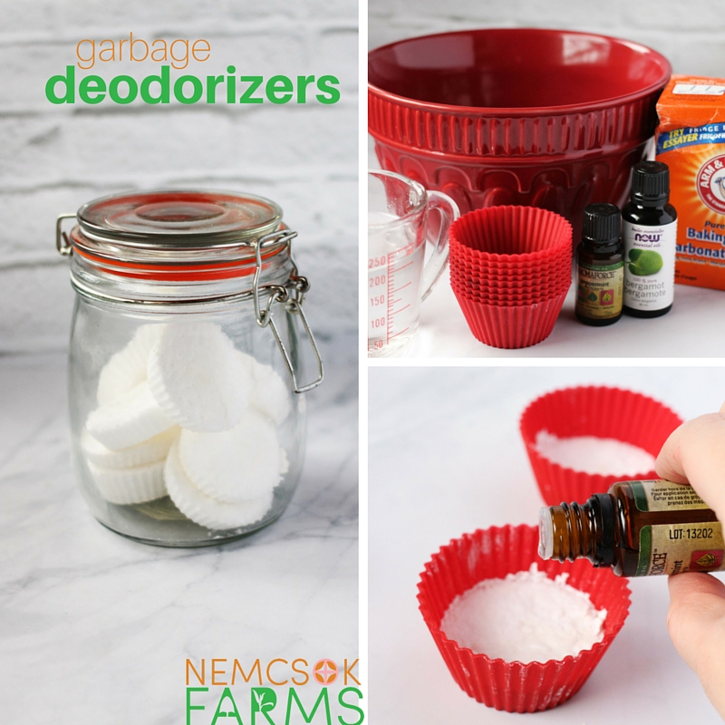 homemade garbage deoderizers
