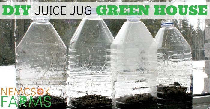 Build A Juice Jug GreenHouse post thumbnail image