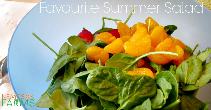 Favourite Summer Salad post thumbnail image