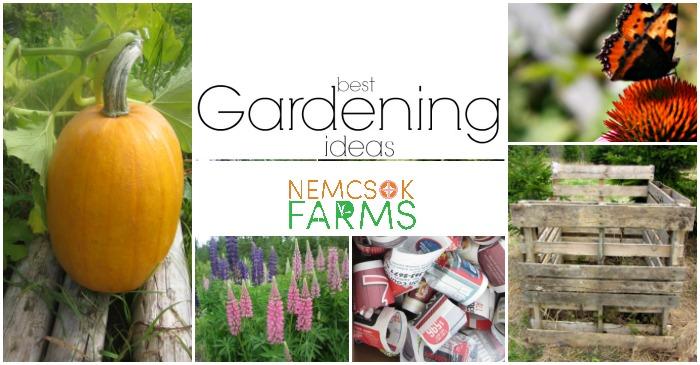 Best Gardening Ideas post thumbnail image