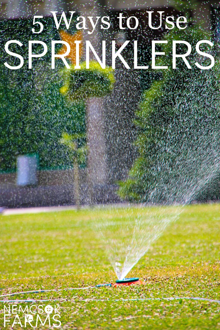 Best Ways to Use Sprinklers in your yard and garden from irrigation to enjoyment to protection