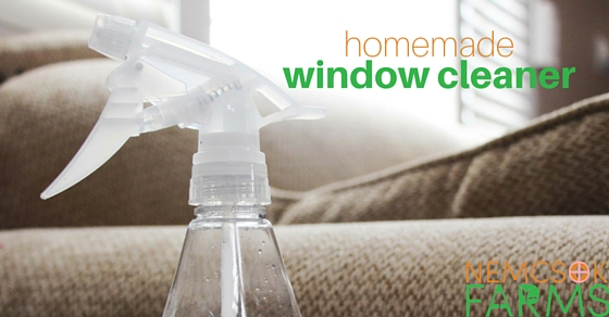 HOMEMADE CLEANERS, HEALTHY HOME: HOMEMADE WINDOW CLEANER post thumbnail image