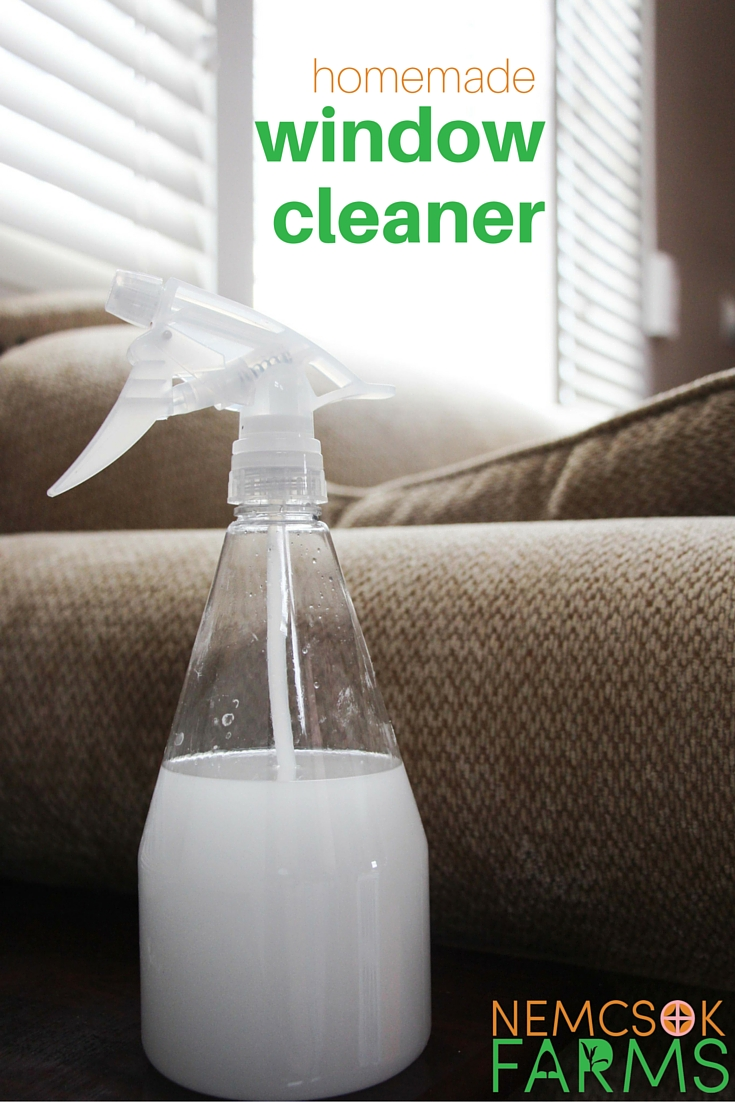 Homemade Glass Cleaner for a Greener, Cleaner Home