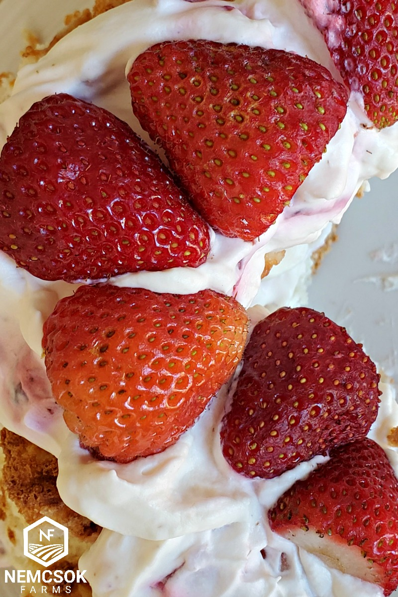 Strawberry Shortcake Summertime Classic