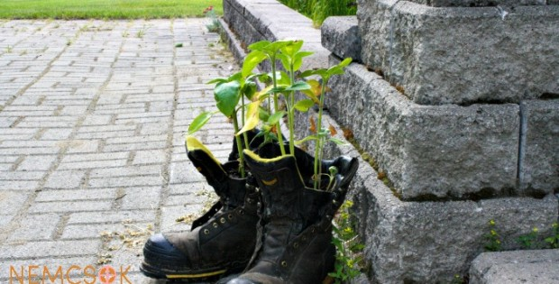 Unique Work Boot Flower Planters to add some whimsy to your yard and garden