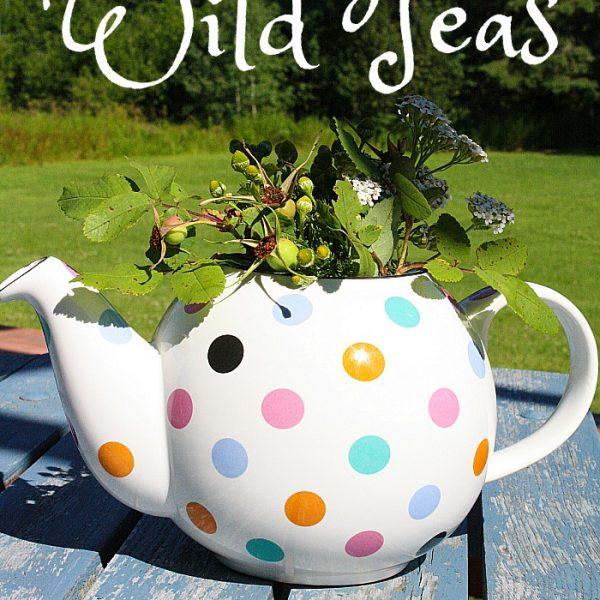 Nemcsok Farms Wild Teas Wild Chamomile Tea Leaves Grown, Harvested and Packaged on the Farm