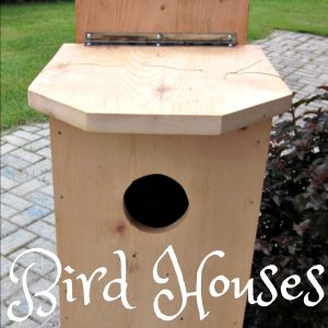 Bird Houses / Habitats