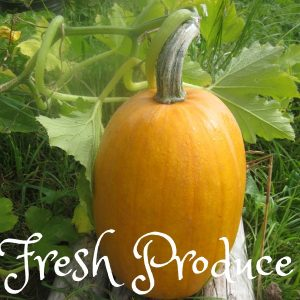 Fresh Seasonal Produce