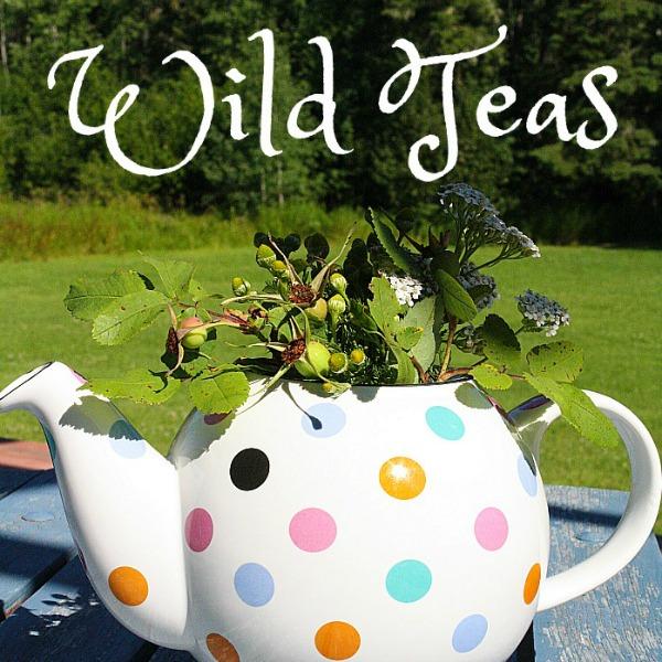 Nemcsok Farms Wild Teas Category