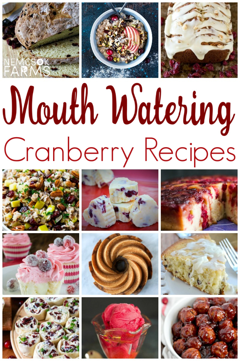 15 Mouth Watering Cranberry Recipes that go a little bit above cranberry sauce.